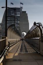People Walking Across Sydney H...