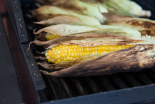 Close Up Of Corn Cobs On Barbecue