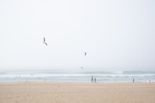 Surfers Enjoy The Waves And Th...