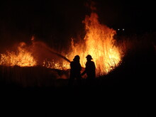 Firefighters Fighting A Grass ...