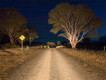 Cattle Grid On A Gravel Road A...
