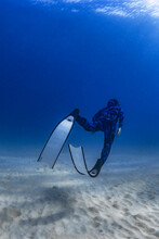 Freediver In The Sand