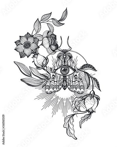 Fototapeta Vector illustration of black and white moth, flowers, branches, isolated on white background obraz