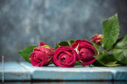 Foto バラの花 屋内撮影