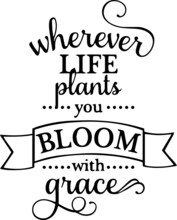 Whenever Life Plants You Bloom...