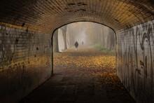 Subway Glow - Autumn In Bitts Park, Carlisle