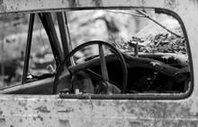 Old Junkyard Cars