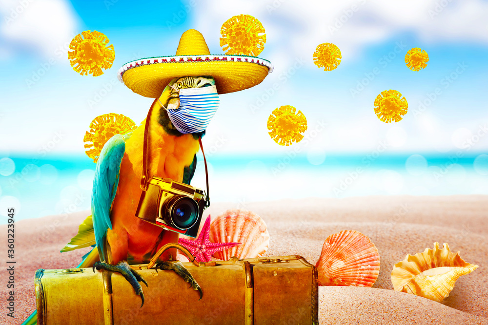 Fototapeta Macaw parrot with medical mask on vacation
