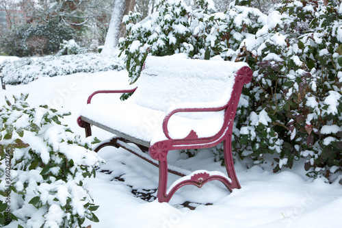 Fototapety, obrazy: A snow covered red  bench in Bush's Pasture Park, City of Salem, Oregon