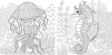 Coloring Pages With Jellyfish And Seahorse