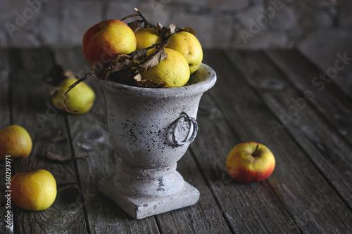 Obraz na plátne Wrinkled apples in an old vase on the table