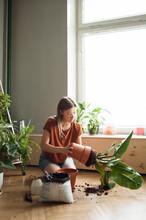 Woman Takes Plant Of A Pot, Kn...