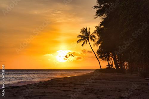 Fototapety, obrazy: Tropical sunset at a sandy beach on Maui.