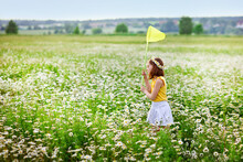 A Girl With A Wreath Of Daisies On Her Head And A Net In Her Hands Catches Butterflies And Has Fun In A Chamomile Field In Summer.