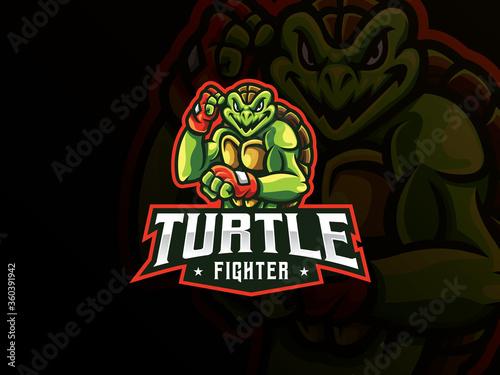 Fototapeta Turtle mascot sport logo design