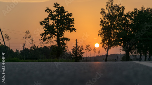 Cuadros en Lienzo sunrise landscape, dark tree silhouettes, paved road texture, contrasting colors