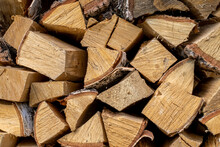 Structure Of Wood In The Woodp...