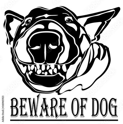 Photo beware of dog