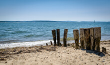 Decaying Wooden Groynes On The...