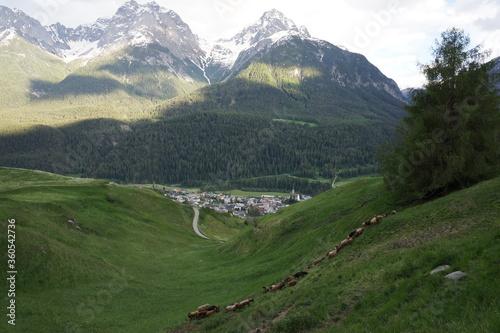 follow the green in Scuol Switzerland