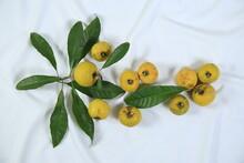 Fresh Ripe Tasty Eggfruits With Leaves Isolated On White Background