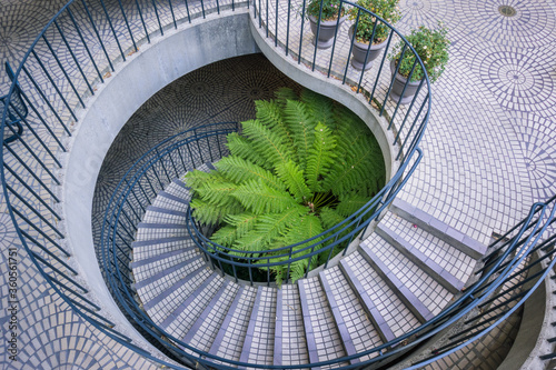 Photo Large fern growing at the base of a spiral staircase, Embarcadero Center, San Fr