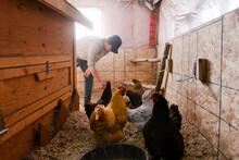 Farmer Feeding Chickens In Chi...