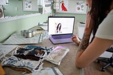 Young Female E-commerce Seamst...