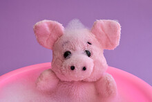 A Pink Little Toy Pig Bathes In A Bright Pink Children's Bathtub, A Delicate Purple Background. Time For A Swim. Baby Care, Water Treatment. Close-up. Concept.