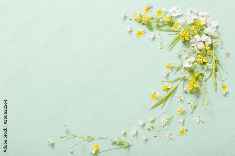 Fototapeta wild flowers on paper background