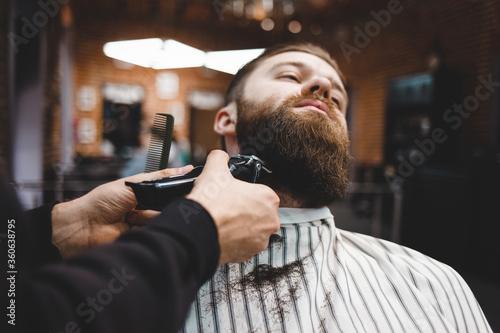 Fototapeta Barber cuts beard to a brutal guy obraz