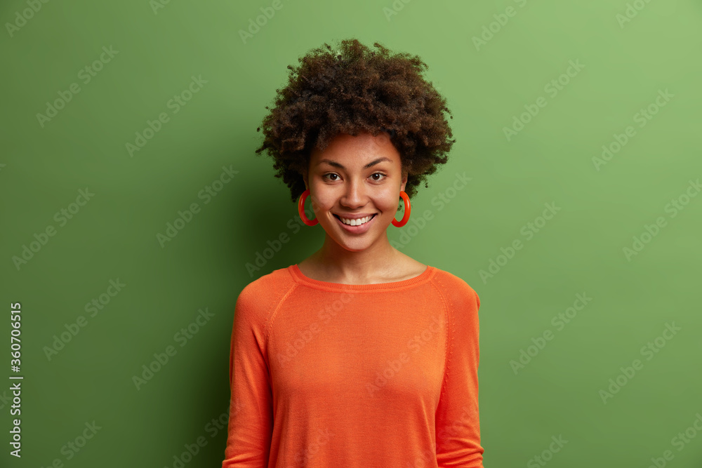 Fototapeta Portrait of beautiful dark skinned woman with bushy curly hair, smiles toothily, has optimistic look, wears orange jumper and earrings looks directly at camera glad to hear good news isolated on green