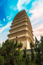 The Small Wilde Goose Pagoda I...