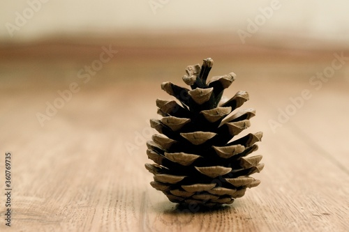 Fotografie, Obraz Selective focus shot of a pine cone on a wooden table