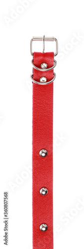 Fototapeta dog collar isolated on a white background