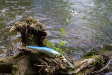 Fishing Lure Caught On A Tree