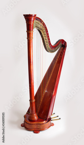 Fényképezés Harp isolated on white background silhouette shellak wooden mucical instrument c