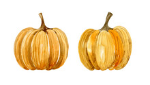 Watercolor Set Of Ripe Pumpkin...