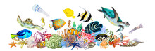 Coral Reef With Tropical Fish, Clownfish, Triggerfish, Angelfish, Blue And Yellow Tang, Sea Turtles, Sea Horses, Jellyfish, Squid, Anemones, Algae. Drawing Watercolor.
