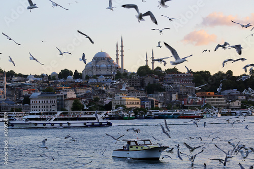 Group of seagulls fly over the Golden Horn river and Rustem Pasa Mosque during sunset in Istanbul, Turkey Canvas