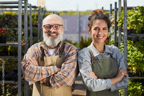 Fototapeta Waist up portrait of smiling bearded farmer with young female worker looking at camera and smiling happily while standing in greenhouse at plantation lit by sunlight obraz