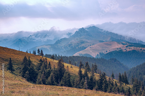 A beautiful mountain landscape with fir trees, mountain peaks and a fabulous sky. #360943902