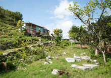Jamaica's Nine Mile Village With A Cemetery