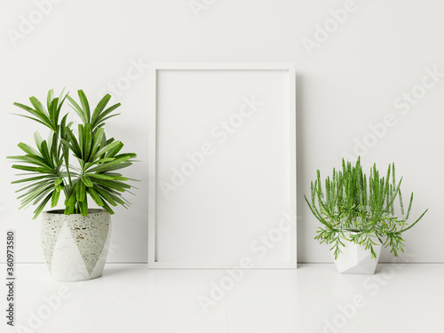 Interior poster mock up with plant pot,flower in room with white wall.