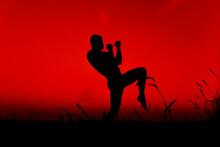 Silhouette Of A Male Fighter E...