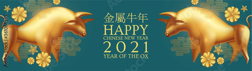 Happy Chinese new Year 2021 The year of the metal ox. Chinese traditional text means year of the ox . Holiday greetings with realistic 3D metal golden ox character.