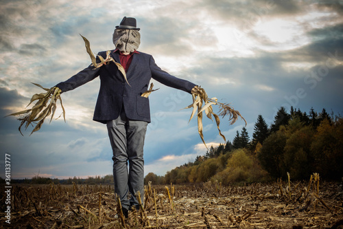Carta da parati scarecrow stands in the autumn field against the evening sky