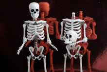 Two Skeletons Stand And Talk One Of Them Without A Head