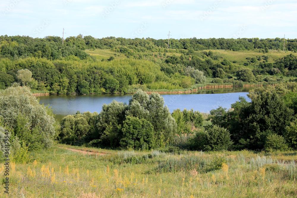 Fototapeta lake and forest - obraz na płótnie