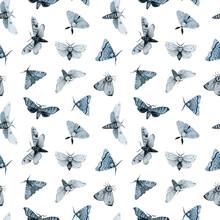 Blue Night Butterfly, Indigo B...